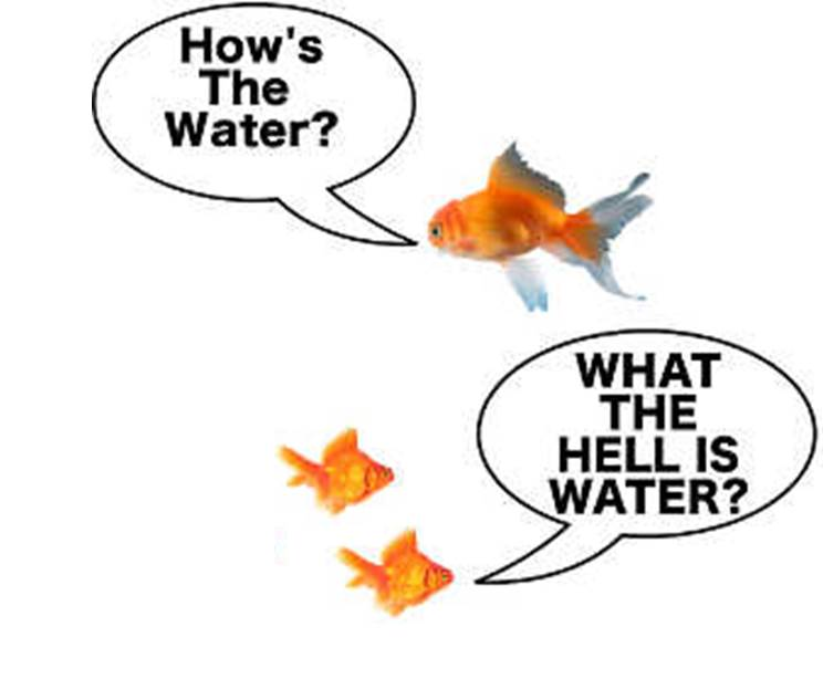 What the hell is water